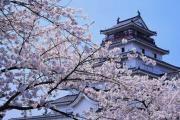 日语本科生推荐的四种升学